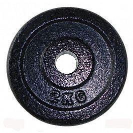 Диск чугунный AB Sport A1-15 2 кг, 26 мм