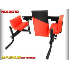 Брусья настенные Magnus MX2010