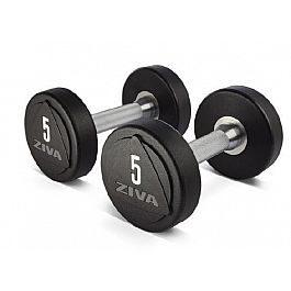 Набор гантелей для фитнеса Ziva ZVO Solid Steel Urethane 1-10кг